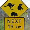Sfeerimpressie Australië Outback: Australie, van Sydney naar Darwin