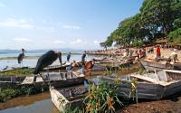 Lake Awassa / vrije dag